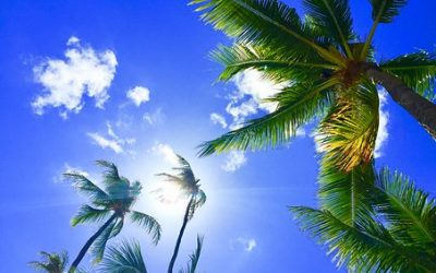 Thought Thursday: The Aloha Spirit Calls You